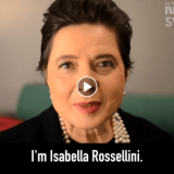 "Isabella Rossellini: ""So, probably women's dreams changed..?"""